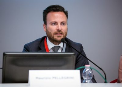 Ing.pellegrini - Convegno Mediazione Civile Roma 2018